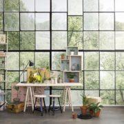Window on Trees Wallpaper